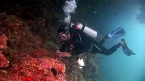 Scuba-duiker het zwemmen van en beelden een koraalrif diep onderwater stock footage