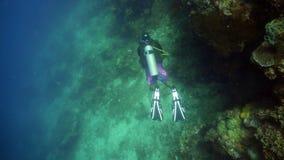 Scuba-duiker Onderwater stock afbeelding