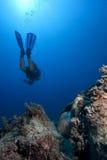 Scuba-duiker onderwater met antiqueancient amfora royalty-vrije stock foto's