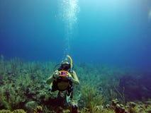 Scuba-duikers in de Baaieilanden Belize royalty-vrije stock foto