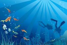 Scuba-duikers, het onderwater overzeese leven Stock Fotografie