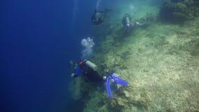 Scuba-duikers onderwater stock afbeelding