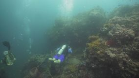 Scuba-duikers onderwater Filippijnen, Mindoro stock footage
