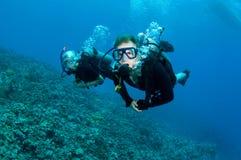 Scuba-duikers op koraalrif royalty-vrije stock foto's