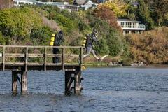 Scuba-duikers op meer royalty-vrije stock foto