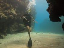 scuba för rev för barriärkameradykare stor arkivbilder