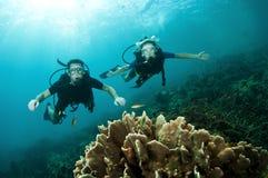 scuba för rev för koralldykarelook Royaltyfri Fotografi