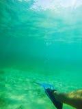Scuba fin in Sardinian sea Royalty Free Stock Photos