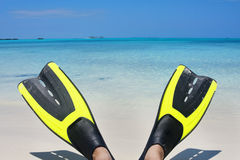 Scuba Fins on the Beach Royalty Free Stock Photo
