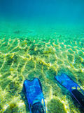 Scuba fins and sea floor in Alghero Royalty Free Stock Photography