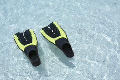 Scuba Fins in water. Two scuba fins or flippers floating in crystal clear water. Let's go diving Royalty Free Stock Images