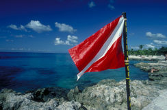 Scuba Flag. In Cozumel, Mexico stock photo