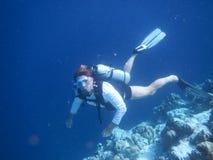 Scuba. Man scuba diving in the Stock Image