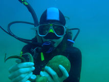 Scubadiver tenant le poulpe Image libre de droits