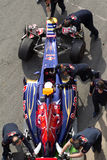 Scuderia Toro Roso, Daniel Ricciardo lizenzfreies stockbild