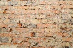 Scuffed кирпичная стена Стоковая Фотография
