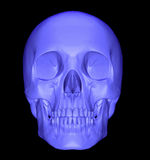 Scull 3d Royalty Free Stock Images