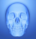 Scull 3d. Human scull 3d illustration blue Stock Images