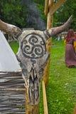 Scull de los toros Imagenes de archivo