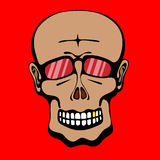 Scull Royalty Free Stock Photography