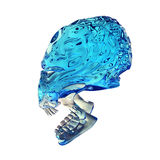 Scull. Glass skull on white background Stock Photography