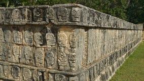 Scullcarvings på en stenvägg i Yucatanen Arkivbild