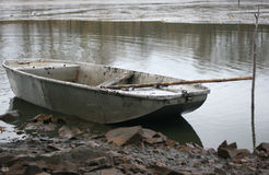 Sculler 1 Royalty Free Stock Photo