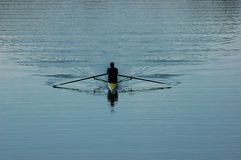 Sculler Royalty Free Stock Photography