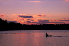 Sculling Royalty Free Stock Image