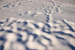 sculpted snowwind Arkivbild
