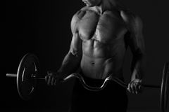Sculpted Torso And Barbell Stock Image