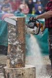 Sculpteur de tronçonneuse découpant la sculpture en logarithme naturel photos stock