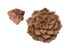 Sculpting natural clay plant decoration isolated on white background. Sculpting wet clay crafts pottery in the process top view stock image