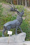 The sculptural composition giant bighorn deer Royalty Free Stock Photography