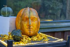 The sculptural head is carved from an orange pumpkin royalty free stock photography