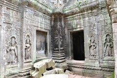 Sculpture of Apsara in Ta Prohm Temple in Cambodia Royalty Free Stock Photo