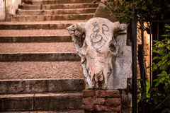 Sculpture of cow skull. Photograph of a sculpture of cow skull on the stairs to the hill with Castle Saint Pietro, Venecia, Italy Royalty Free Stock Photos
