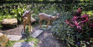 Sculpture de deux dears image libre de droits