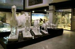 Sculpture des animaux éteints photographie stock libre de droits