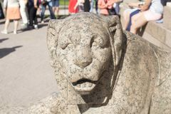 Sculpture des lions à St Petersburg photos stock