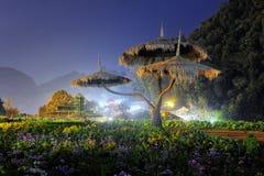 Sculpture en arbre en parc national photos libres de droits