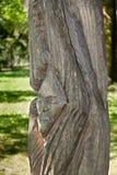 Sculpture en bois Images libres de droits