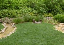 Sculpture en bronze d'un gar?on avec gravure ? l'eau forte un croquis par Gary Price ? Dallas Arboretum et au jardin botanique photos libres de droits