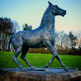 Sculpture en bronze effrayée en cheval par Mark Delf Photographie stock libre de droits