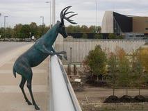 Sculpture en cerfs communs Photographie stock