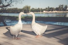 sculpture en décoration de canard Images libres de droits