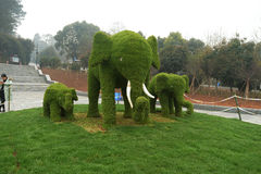 sculpture en elephents d'herbe dans le jardin botanique Photo stock