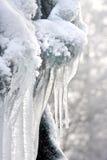 Sculpture en hiver Image libre de droits