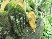 Sculpture en main de Bouddha couverte de la mousse dans la nature, l'antiquité et le vestige verts en Asie photos stock