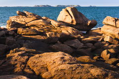 Sculpture en nature Photographie stock libre de droits